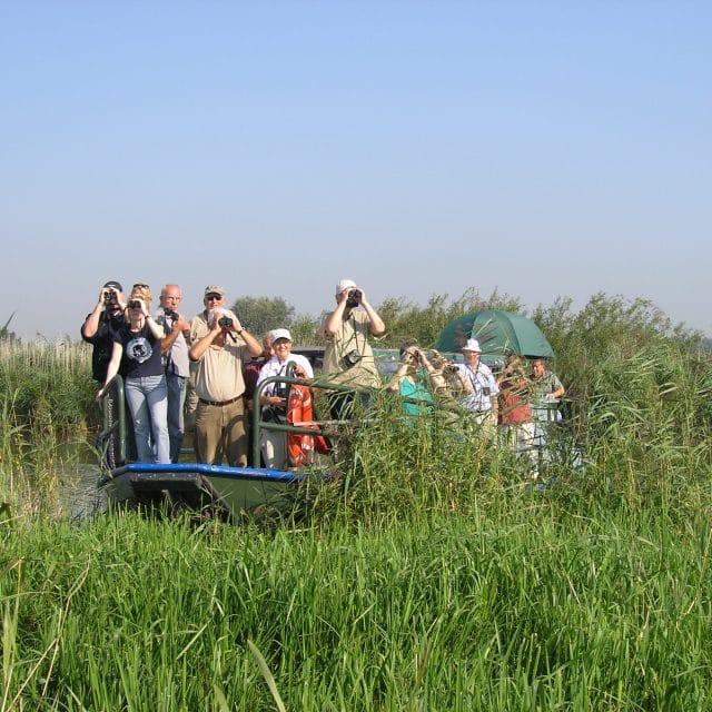 Rondvaart Sterling Nationaal Park de Biesbosch Dordrecht