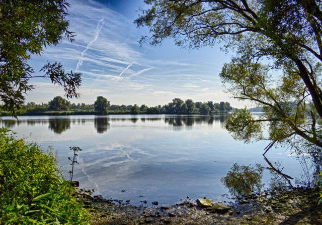 nationaal Park de Biesbosch - natuur Dordrecht