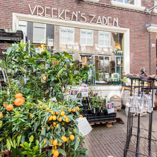 Vreekens Zaden - Dordrecht - Voorstraat - zaden en planten - biologisch - duurzaam - moestuin