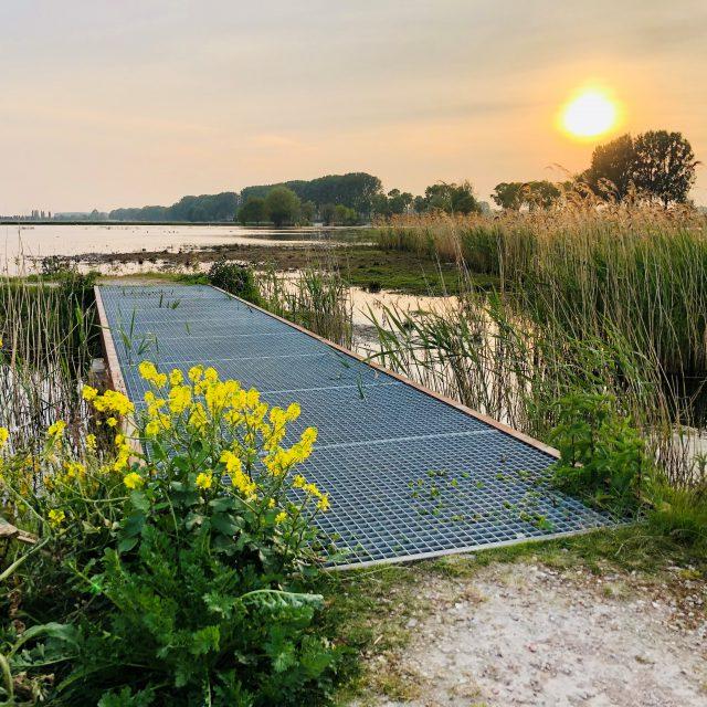 Biesbosch - natuur -wandelroute - fietsen