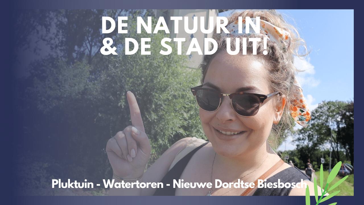 Miniatuur De natuur in en de stad uit Dordt Vlogt Dordrecht