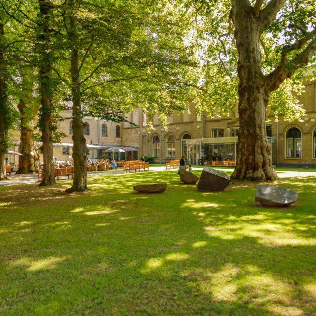 Dordrechts Museum tuin Dordrecht